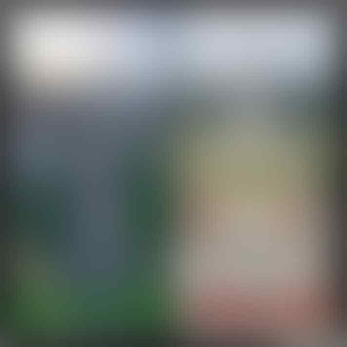 Ribut-Ribut Soal Revitalisasi Monas, Agan Setuju?