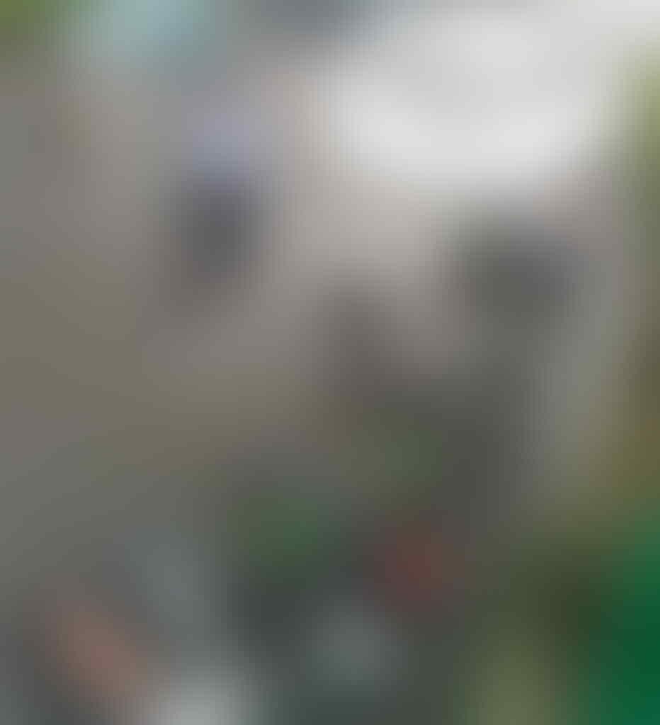 Anak Buah Anies Lempar Tanggung Jawab Banjir Underpass Kemayoran