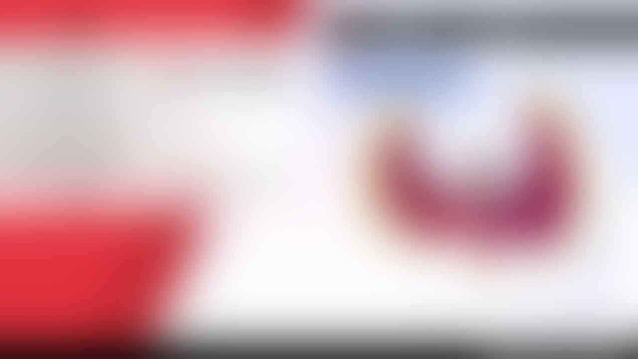 Pokemon Sword Shield Nintendo Switch - 400 Full Pokedex Shiny Pokemon
