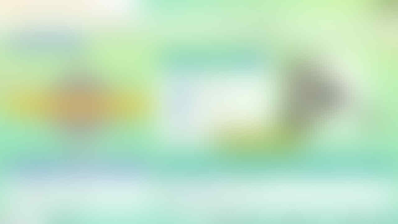 Paket Complete Pokedex Shiny Pokemon Home Gen1 - Gen7 Nintendo Switch