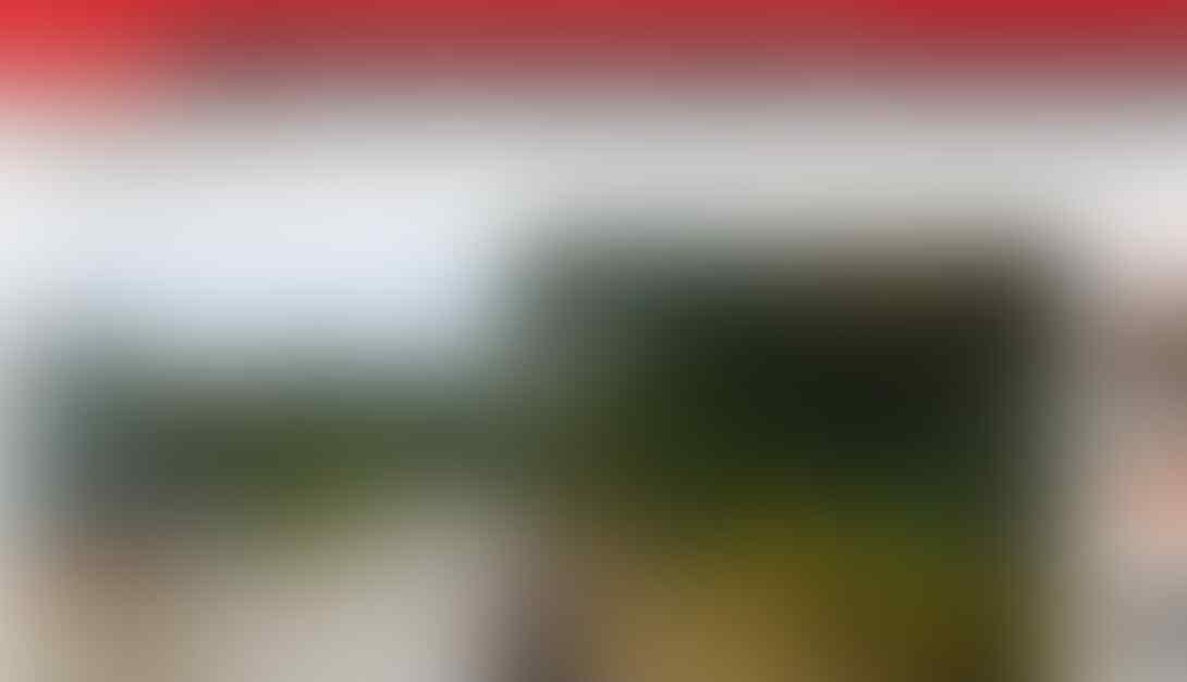 Jokowi Segera Umumkan CEO Ibu Kota Baru, Ahok Jadi Kandidat