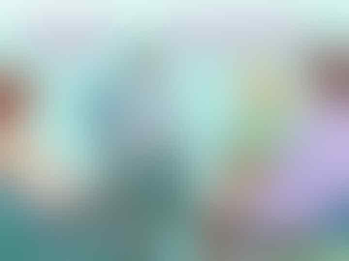 193 Ekor Kelelawar Dimusnahkan, Sampelnya Mengandung Virus Beta Corona