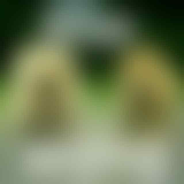 Ancam Kabur, Jemaah Gowa Corona Diizinkan Isolasi Mandiri
