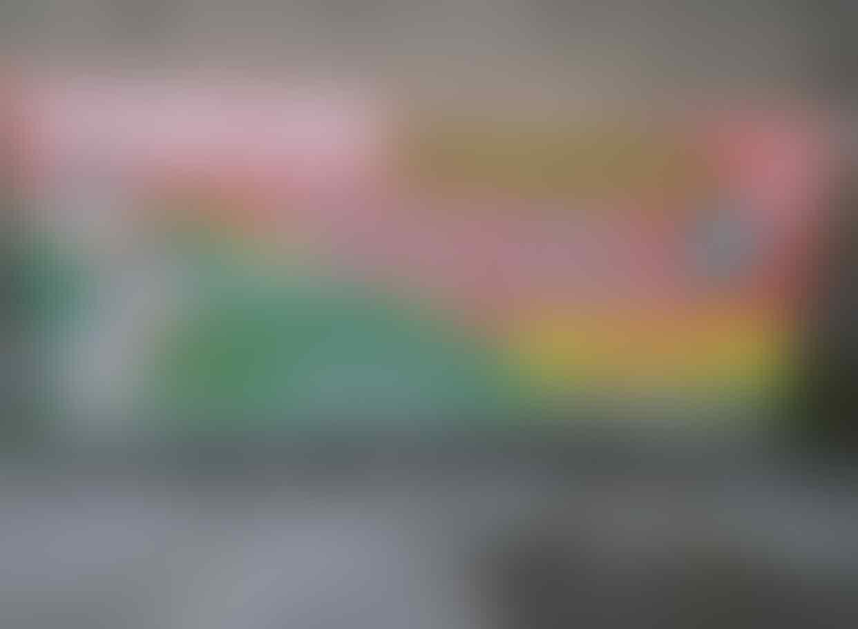 Foto Penampakan 'GURITA HANTU JEPANG' Dengan Tentakelnya Yang Menyeramkan