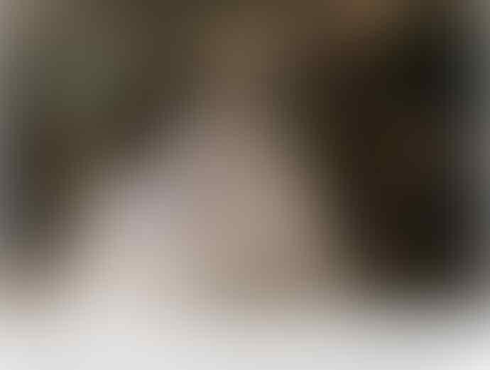 Komnas PA Sebut Pelaku Pencabulan Anak di Gereja Depok Layak Dikebiri
