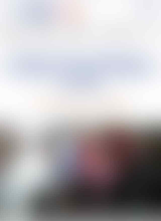 Soal Pembakaran Bendera PDIP, Ustaz Haikal Sebut 212 Selama Ini Santun