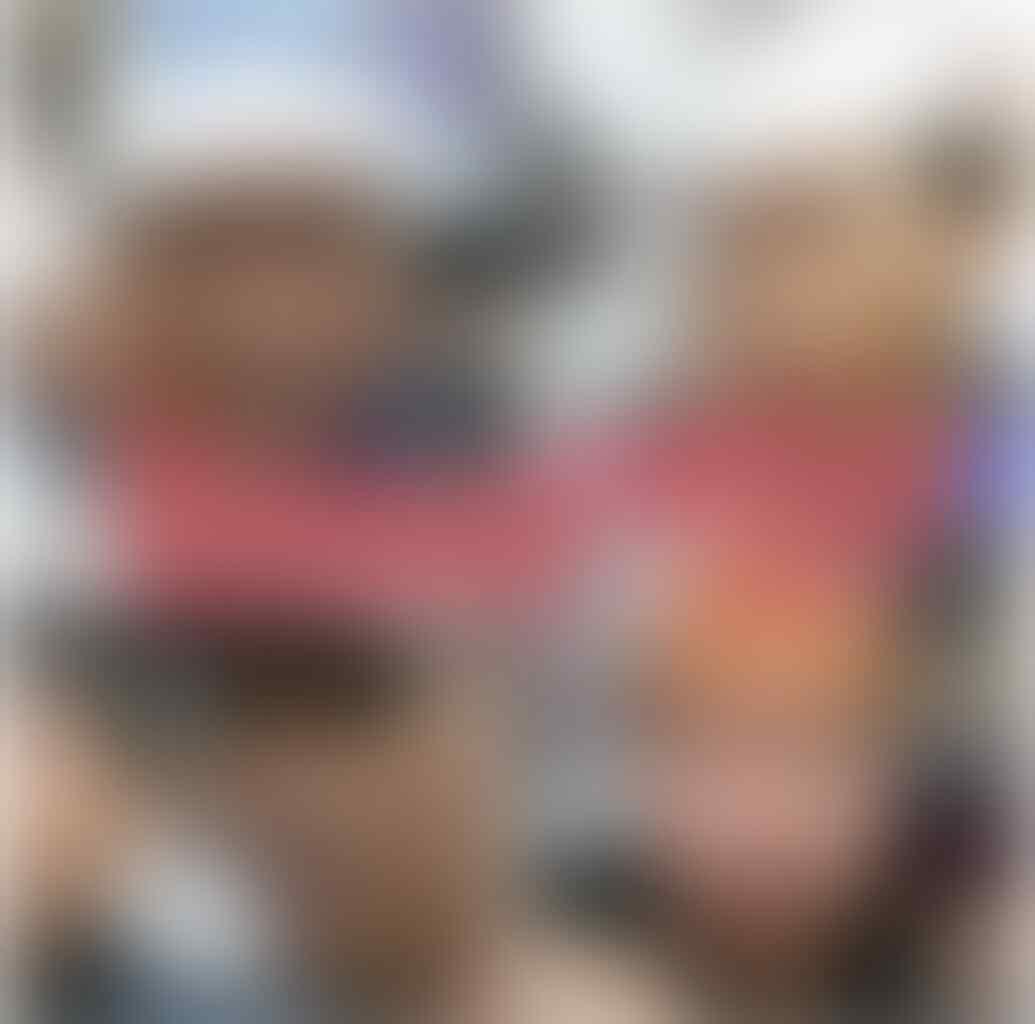 Klaim Korlap Aksi: Tak Tahu Bendera PDIP Dibakar hingga Diklarifikasi Polisi