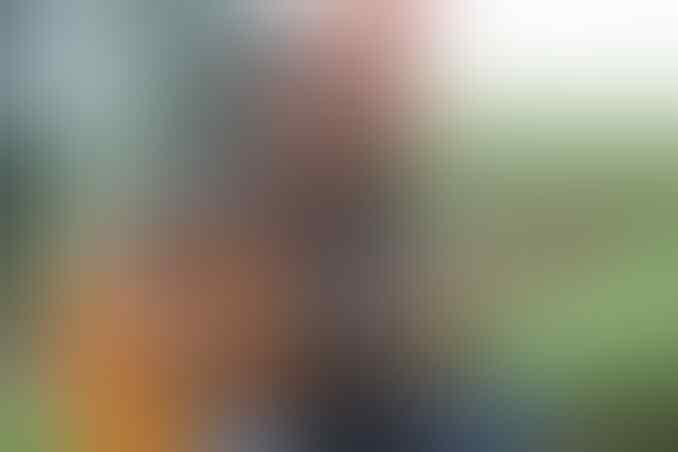 Biodata Tengku Zulkarnain yang Diprotes Netizen