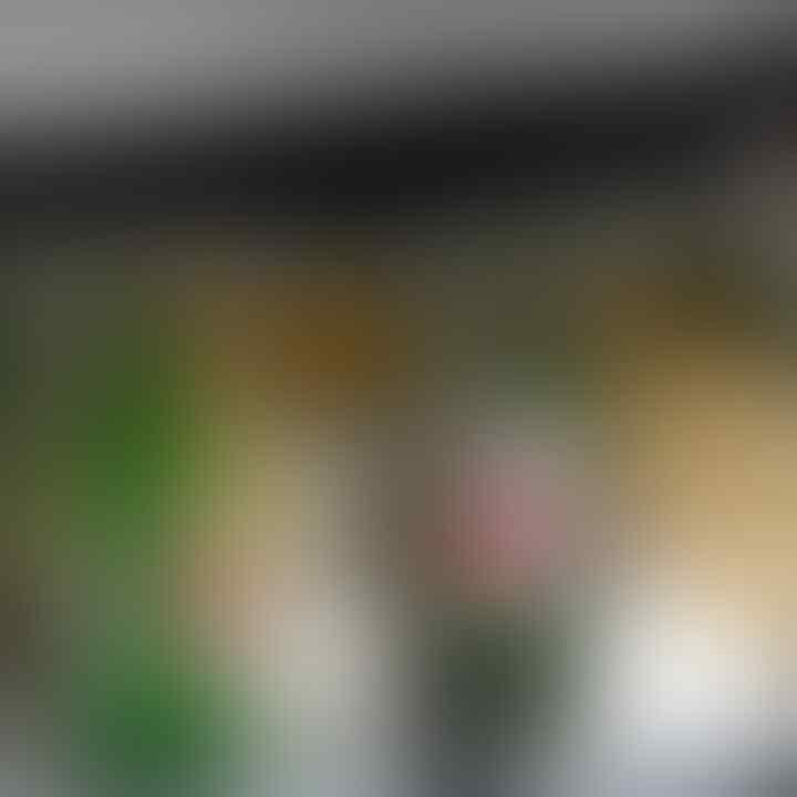 Nenek Penghina Ahok-Puput Minta Maaf, Ahok Tolak Cabut Laporan di Polda Metro
