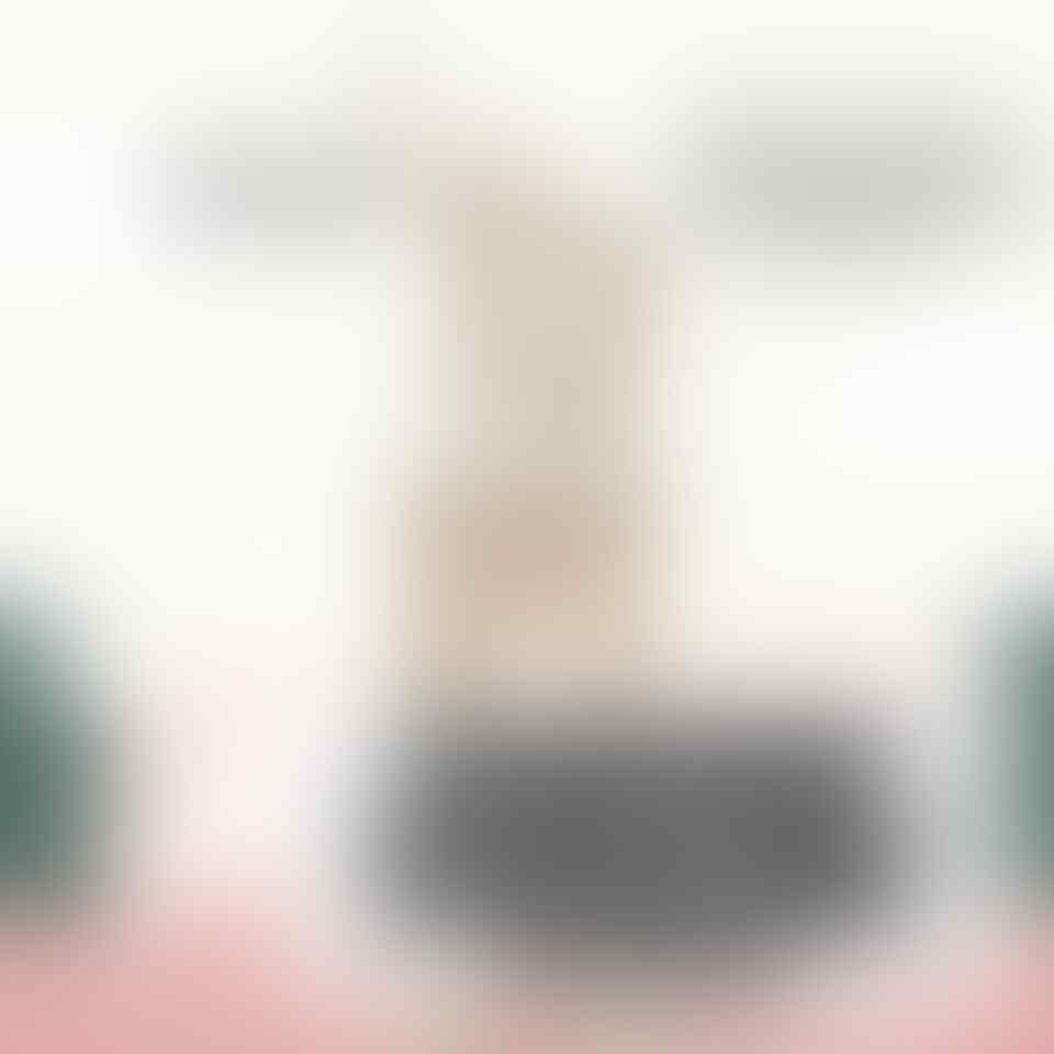 Ganjil Genap Bikin DKI Zona Hitam, GP Ansor: Pergub Anies Baswedan Timbulkan Masalah