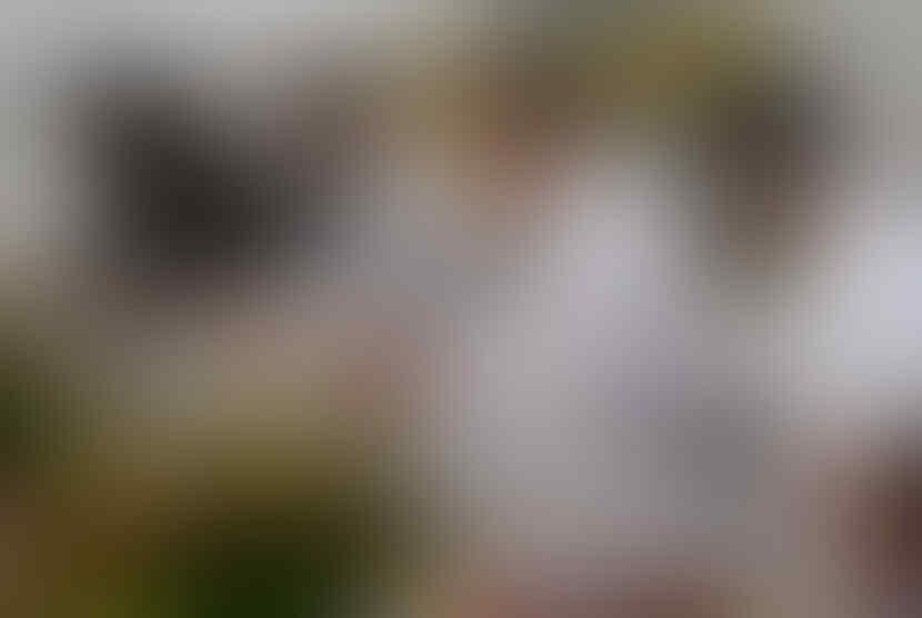 Kepergok Pakai Masker Bedah saat Rapat di DPRD DKI, Gubernur Anies Ungkap Alasannya
