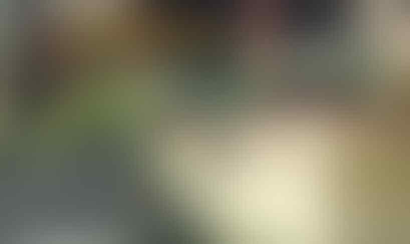Yuk..Share Taman Indah di Rumah Gansis
