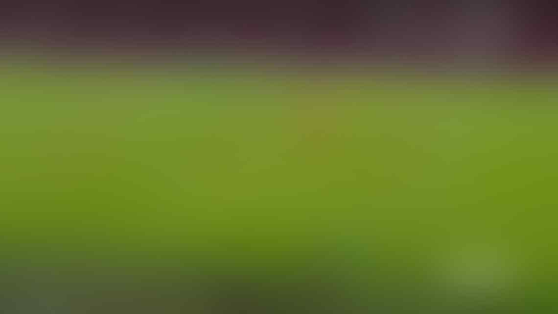 (★★★) Juventus FC 2020 - 2021 #FinoALLaFine #ForzaJuventus @JuveKaskus @IndoJuveJOFC