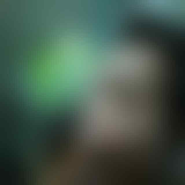 Bikin Mata Melotot! 10 Foto Paling Hot Taniya Ayu Artis yg Terseret Kasus Prostitusi