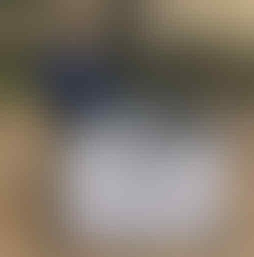 Ahok Ikut Nyanyi Bareng Sambil Copot Masker di Kerumunan Raffi Ahmad