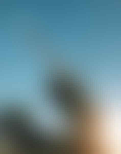 Sistem Rudal Patriot - Perisai Kota Makkah, Digunakan Untuk Melindungi Jamaah Haji