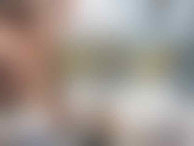 10 Petarung Wanita Teratas dari Arena Game Pertarungan, Pastinya Bikin Mata Segar!