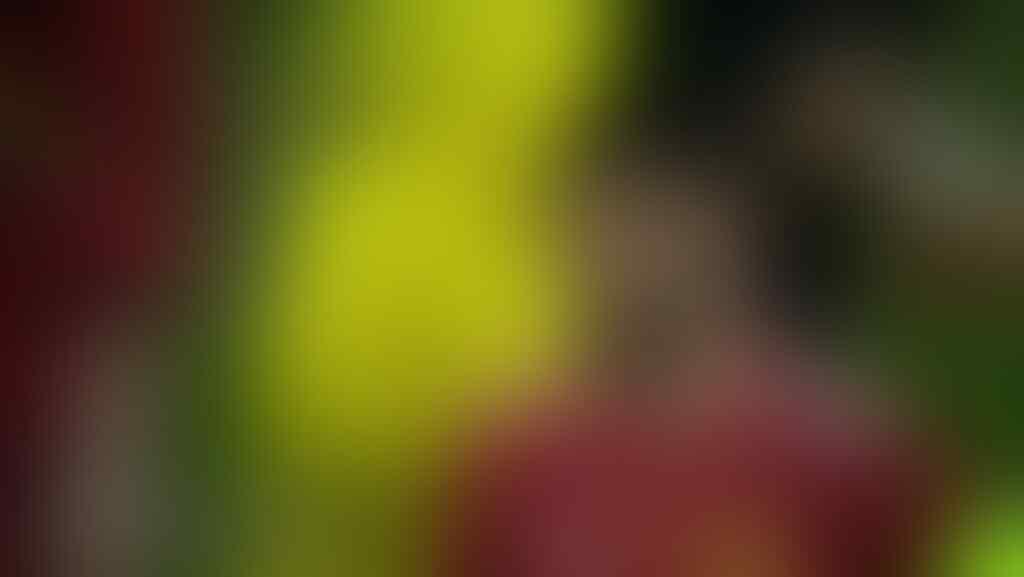 [United Kaskus] Manchester United F.C. 2020/2021 ∣ Take Me Home, United Road
