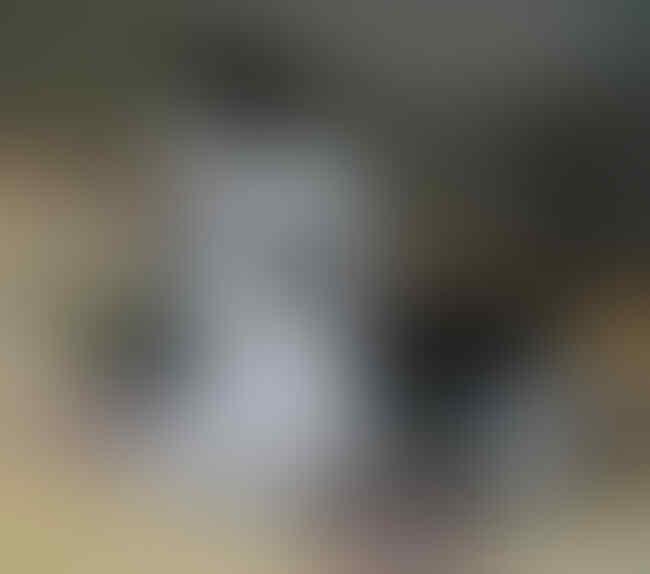 Disemprot Netizen Gegara Foto Seksi Usai Mualaf, Katty Butterfly Beri Balasan Telak