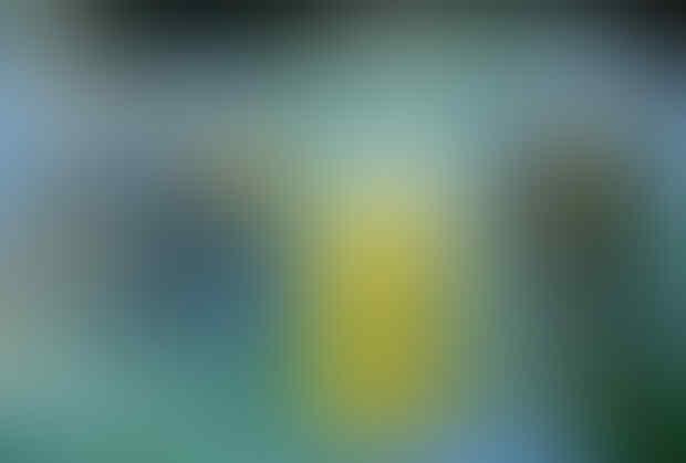 50 Lukisan Hyper Realistic Yang Super Duper Wow [AMAZING]