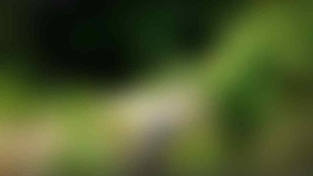 Ini nih gan!! Penampakan Goa jomblang yang ada di iklan Rokok Dj*rum Sup*r (Pic++)