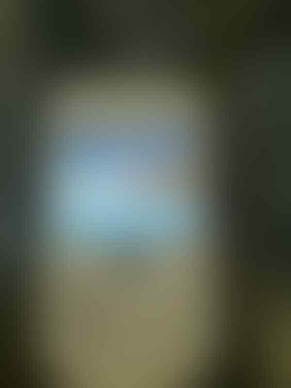 BB Gemini 3G white 2nd