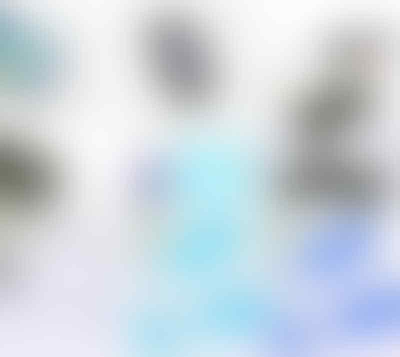 PREMIUM ULTRA SOFT GEL CASE SAMSUNG GALAXY FAME S6810