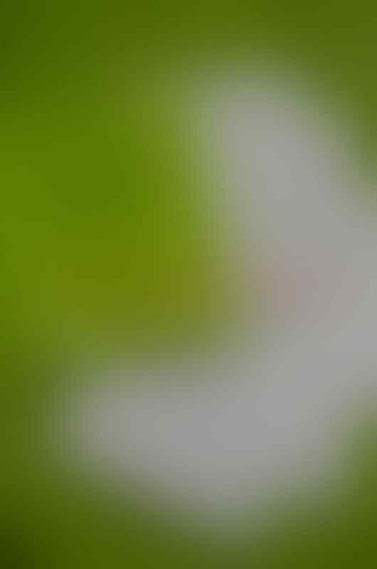 Jual HTC Wildfire S - Pink [Msh garansi - Ex.Wanita]