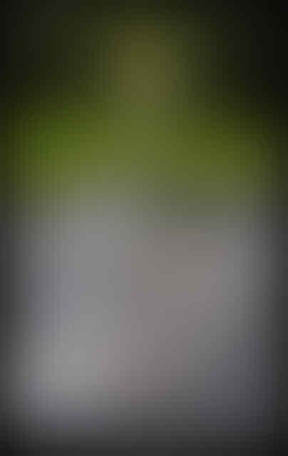 Air Mancur Api karya Jeppe Hein. sadis gan! (Pic + Video)