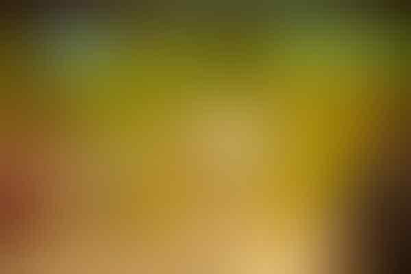 10 Toko Permen Unik di Dunia [penggemar permen masuk gan :D]