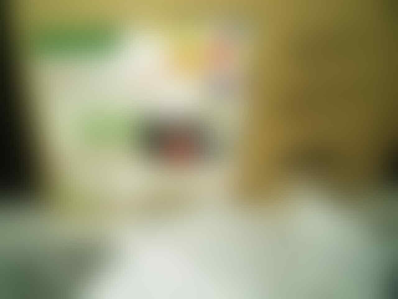 J> Backup UPS APC RS 500 300W/500VA