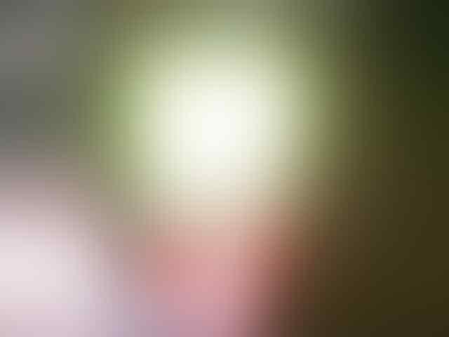 PUSAT LED PLAFON - HIGH QUALITY - ANEKA JENIS - ANEKA SOCKET - CAMPUR2 - MURAHH!!
