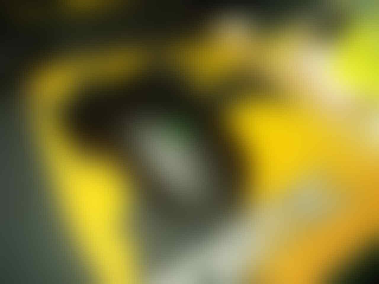 WTS Razer DA 2013 95%