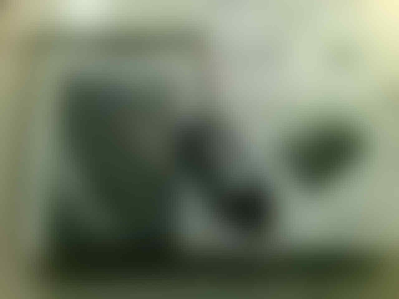 JUAL MURAH HDD EXT SEAGATE EXPANSION 500 GB USB 3.0 FULL ISI COD BANDUNG