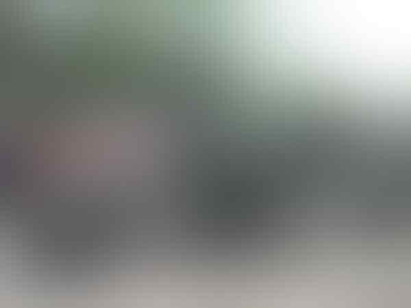 Satelit RI Disusupi Mata-mata, Pemerintah Diminta Segera Bertindak