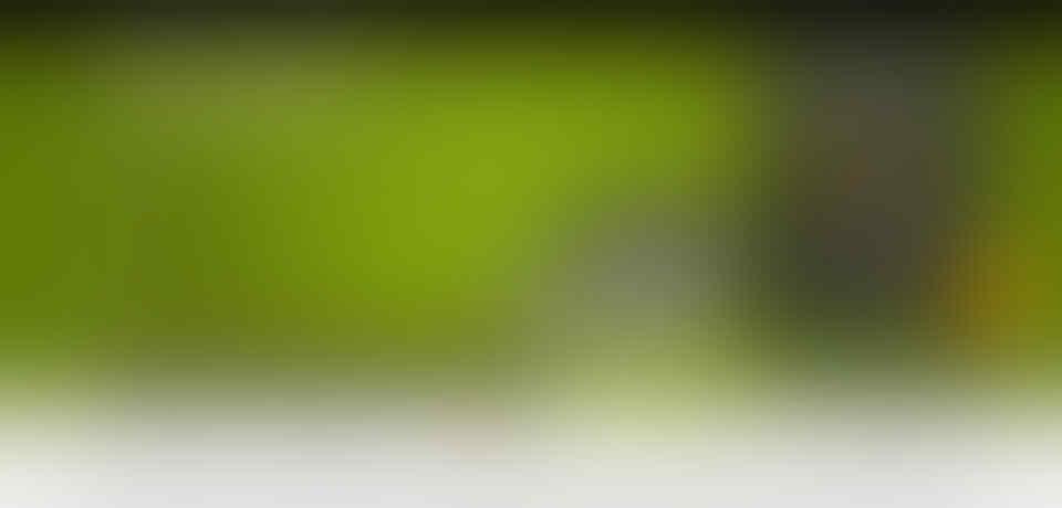 Dicari PART TIME developer website mahir CMS (wordpress / joomla) HTML -> theme
