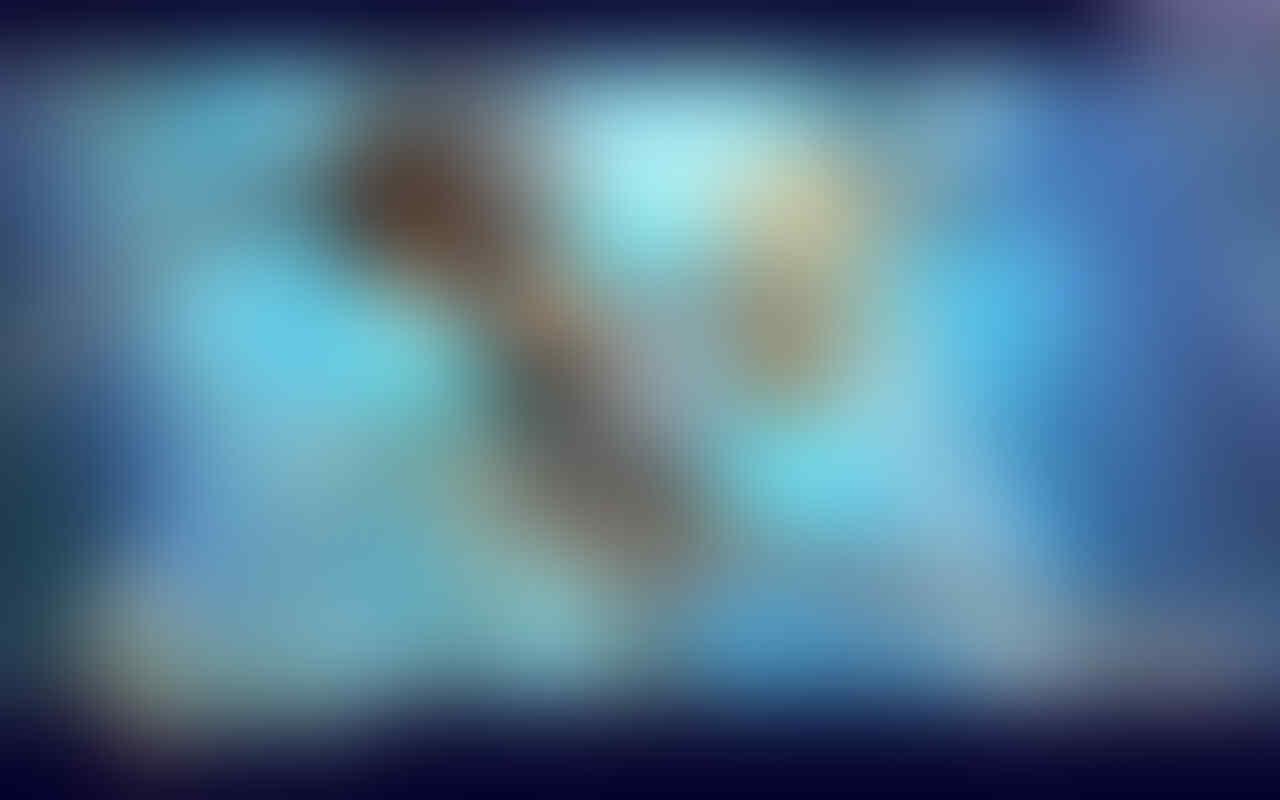 .::|| Aura Kingdom Online ||::.