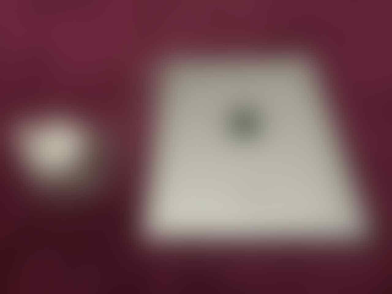 IPAD 4 RETINA DISPLAY 64GB WIFI CELL MULUSS