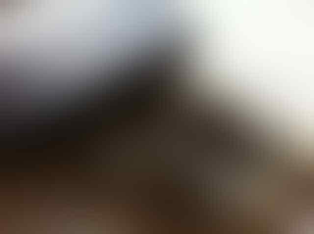 WTS CONVERSE CHUCK TAYLOR CT SPEC OX - GREY/BLACK PLAID [SECOND]