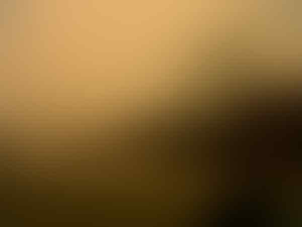 #PrayForRiau Riau Terancam Hilang