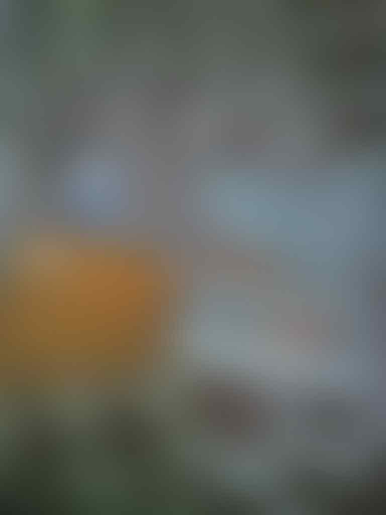 "FREE ONGKIR   Himax Polymer Li, QUADCORE 5"", READY STOK ,Termurah & REKBER WELCOME"