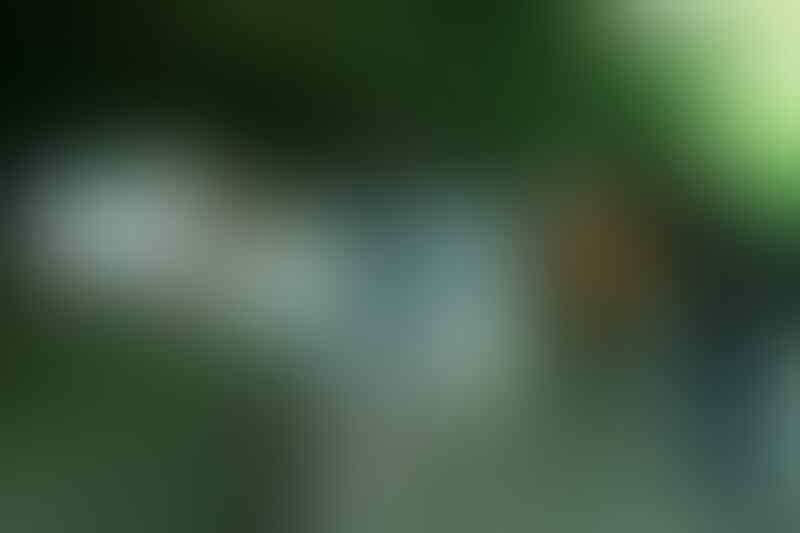 [share] Uniknya Londa, Makam Gua Batu yang Terletak di Atas Tebing di Toraja Utara