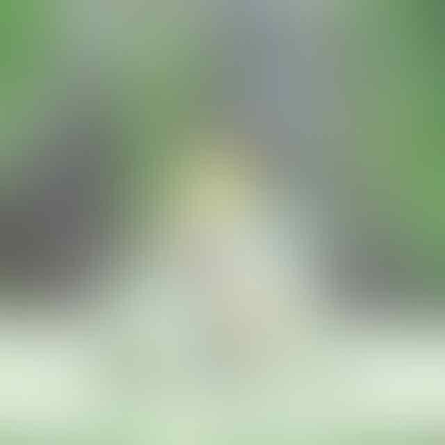 FOTO-FOTO CIGULL JKT48 [BENING INSIDE]