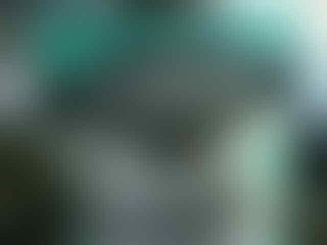Keripik Singkong COKOTEN