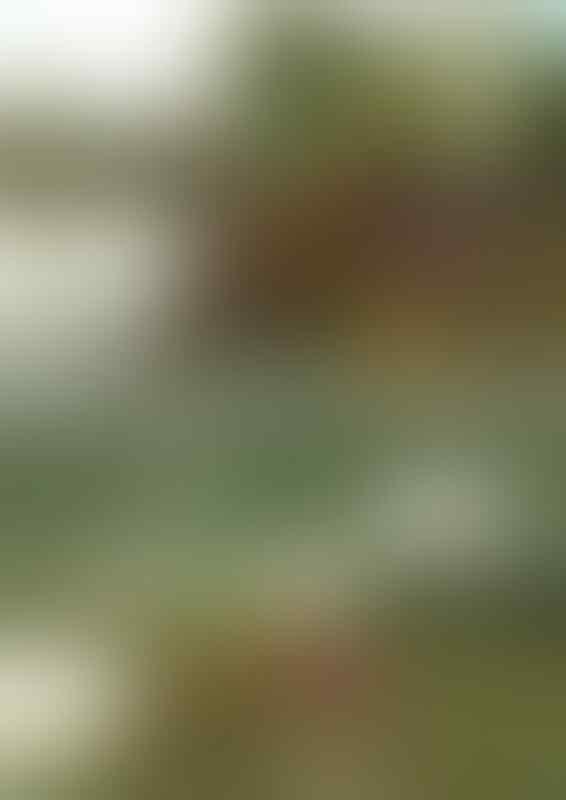 [OFFICIAL] FJB Reg. Karesidenan Kedu