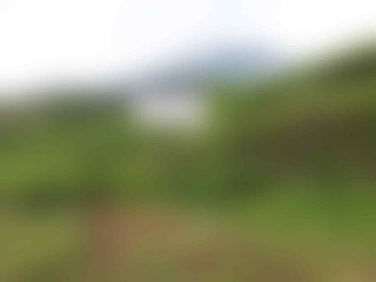 ( CATPER) Gunung Dempo dan Indahnya Pagar Alam 24-30 Mei 2014
