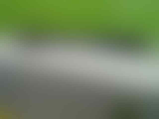 DIJUAL SMARTPHONE ANDROID MURAH SONY XPERIA P JOGJA / YOGYAKARTA
