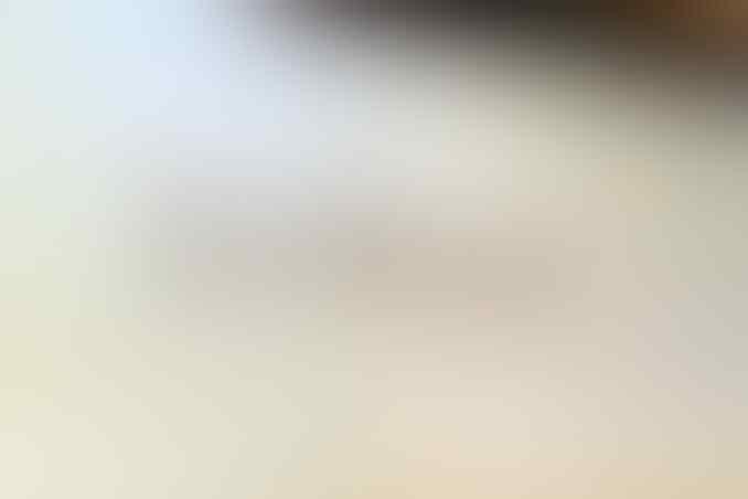 [TroN] READY STOCK Asus Zenfone / Zenphone 4, 5, 6 Garansi Resmi 1 Tahun SIKAT GANN!!