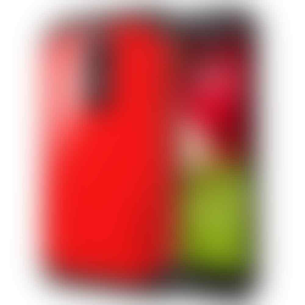 CASE SPIGEN SLIM ARMOR, NEO HYBRID, LG NEXUS 5, G2, G3 TEMPERED GLASS, MOTO G