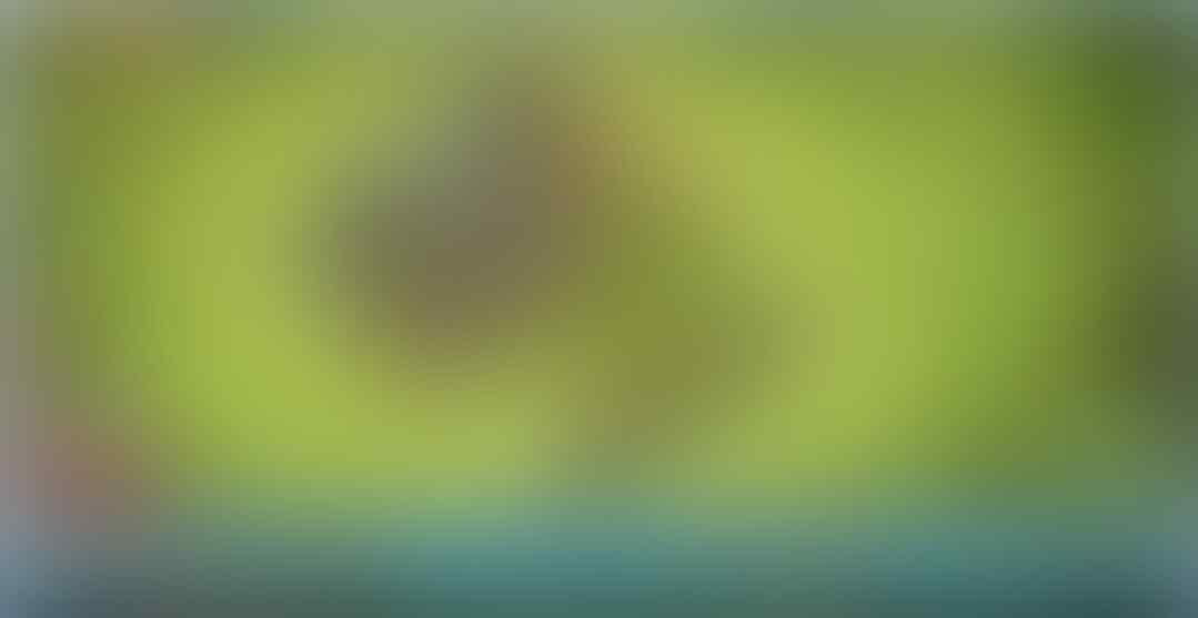 [JUAL] ID COC TH 9 LV 73